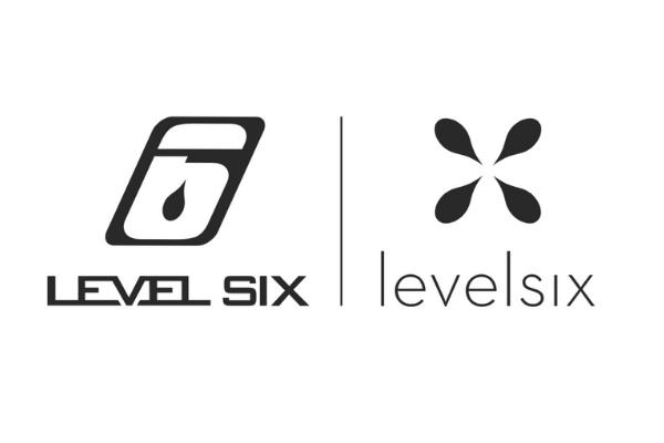 level six logo